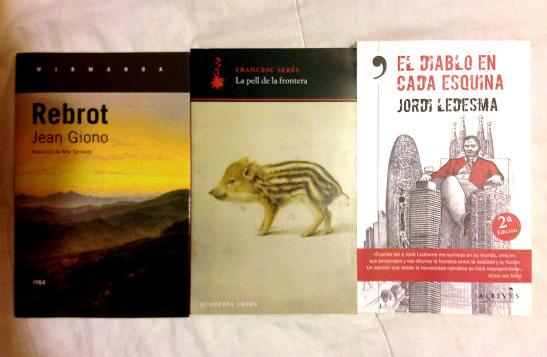 llibres-rebrot-pell-diablo