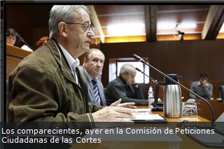 Los comparecientes, ayer en la Comisión de Peticiones Ciudadanas de las Cortes
