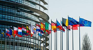 La DGA ha presentado en Estrasburgo un informe sobre la situación de las lenguas minoritarias de Aragón. Foto: Web Parlamento Europeo